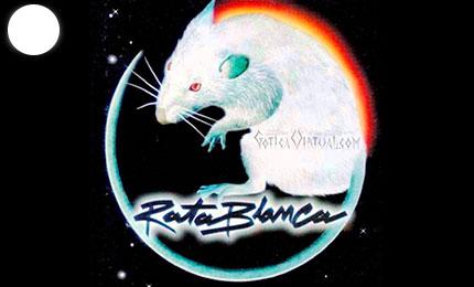 afiche rata blanca economico poster bonito bandas envios bogota cali armenia santander quindio pereira colombia